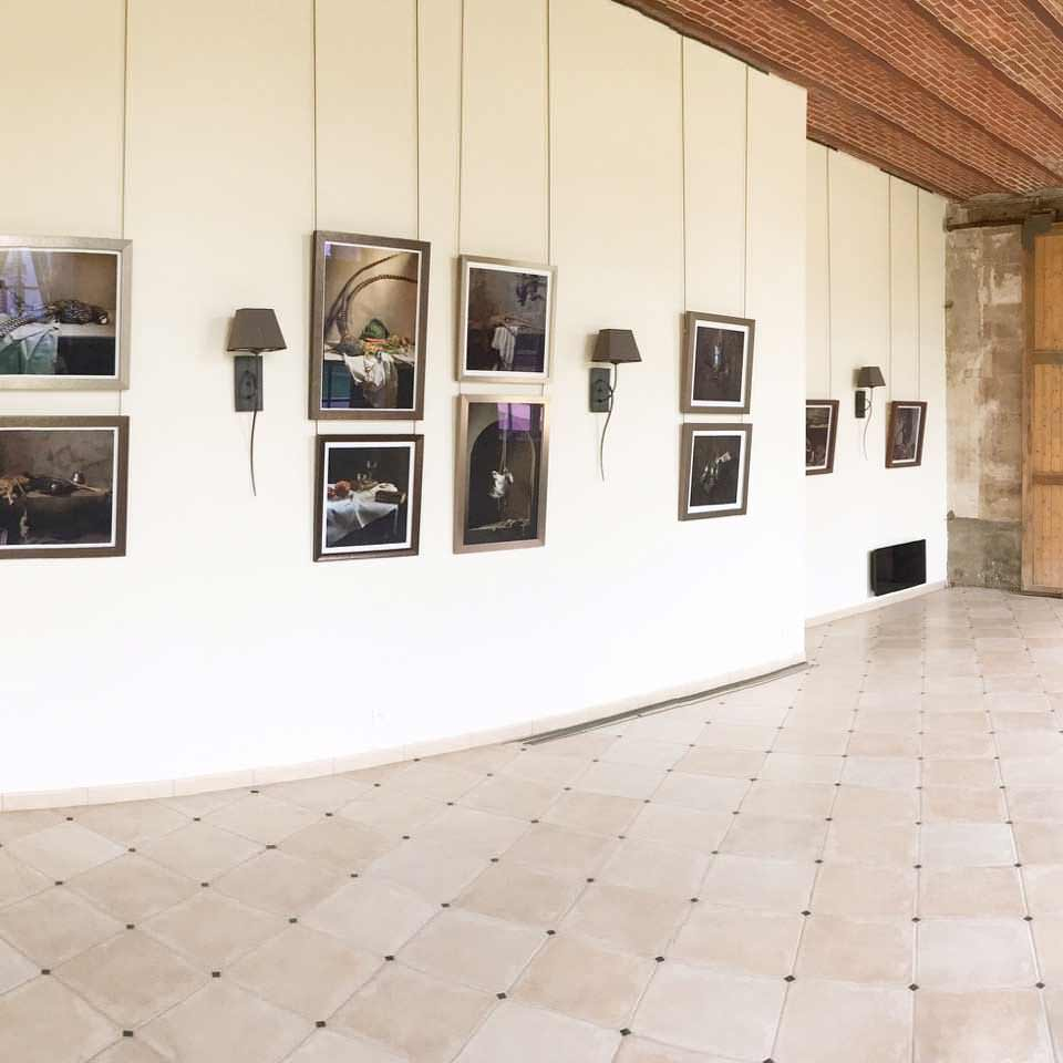 Exposition Pauline Planchon exemple de tableau