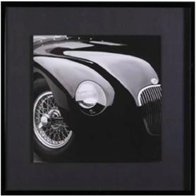 jaguar tableau encadrement