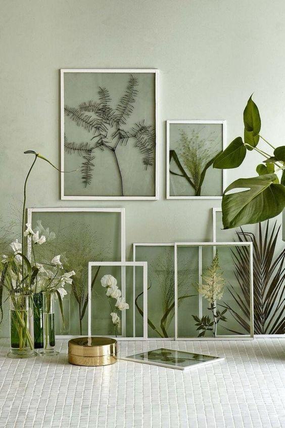 encadrement plantes végétaux @freshidees.com
